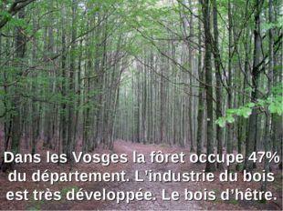 Dans les Vosges la fôret occupe 47% du département. L'industrie du bois est t