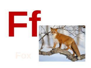 Ff Fox