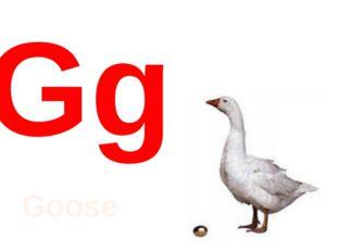 Gg Goose