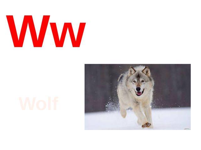 Ww Wolf
