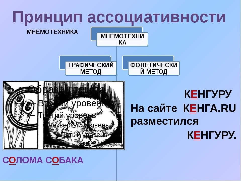 Принцип ассоциативности СОЛОМА СОБАКА КЕНГУРУ На сайте КЕНГА.RU разместился...