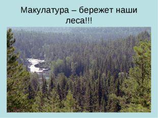 Макулатура – бережет наши леса!!!