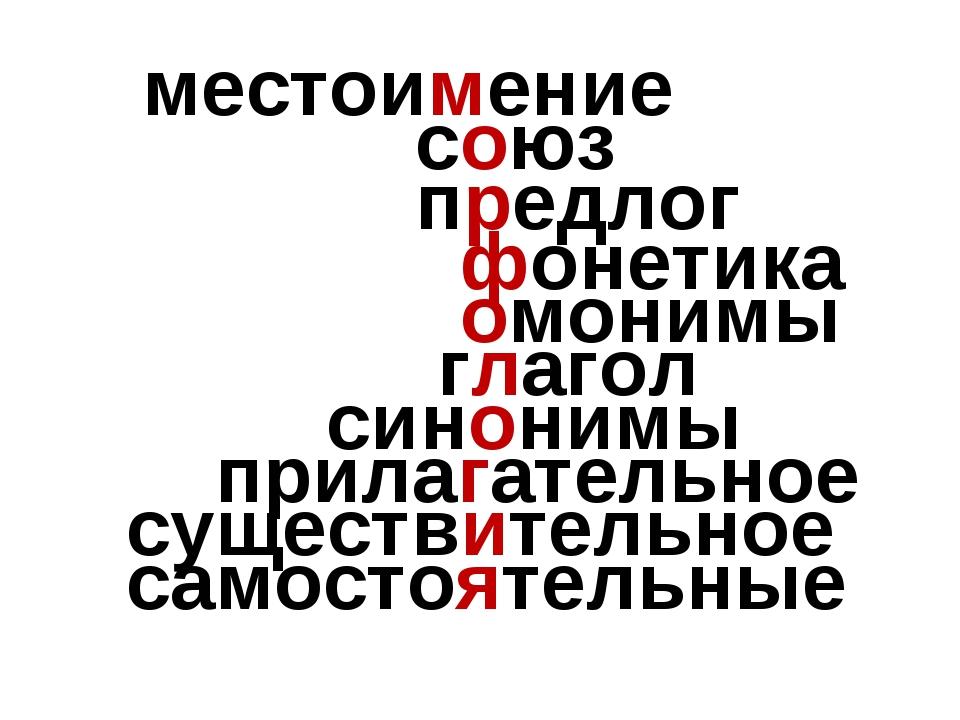 местоимение союз предлог фонетика омонимы глагол синонимы прилагательное сущ...