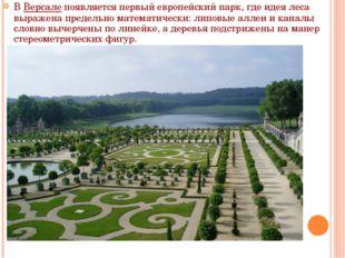 В Версале появляется первый европейский парк, где идея леса выражена предельн