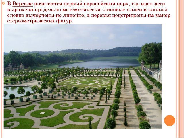В Версале появляется первый европейский парк, где идея леса выражена предельн...