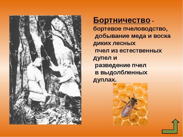 Подсе́чно-огнево́е земледе́лие — одна из примитивных древних систем земледели...