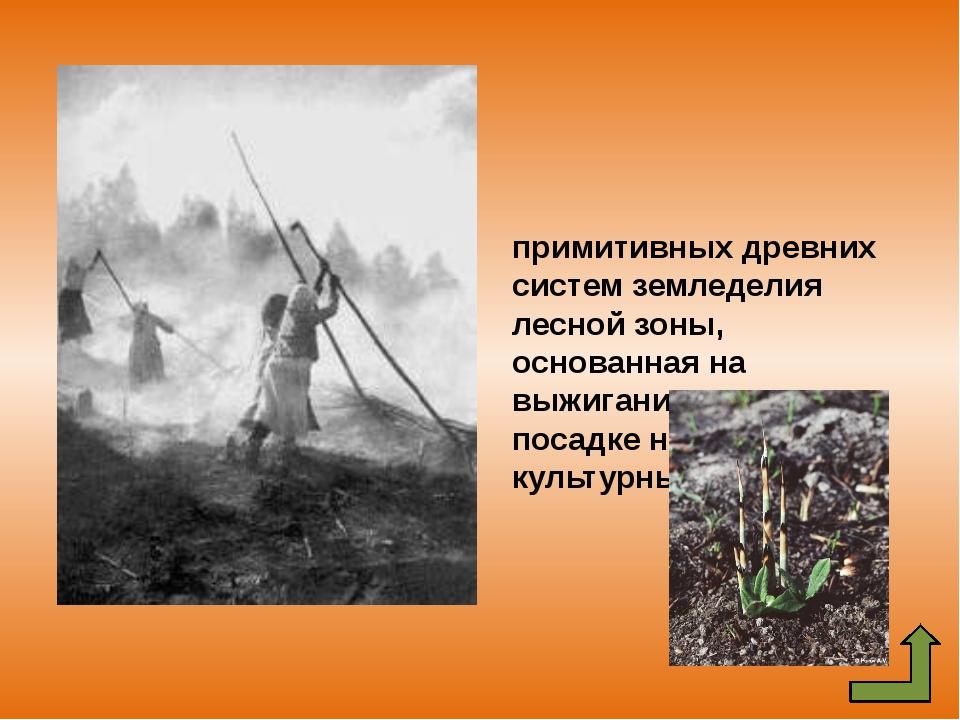 Переложная система земледелия, примитивная система земледелия, при которой вы...