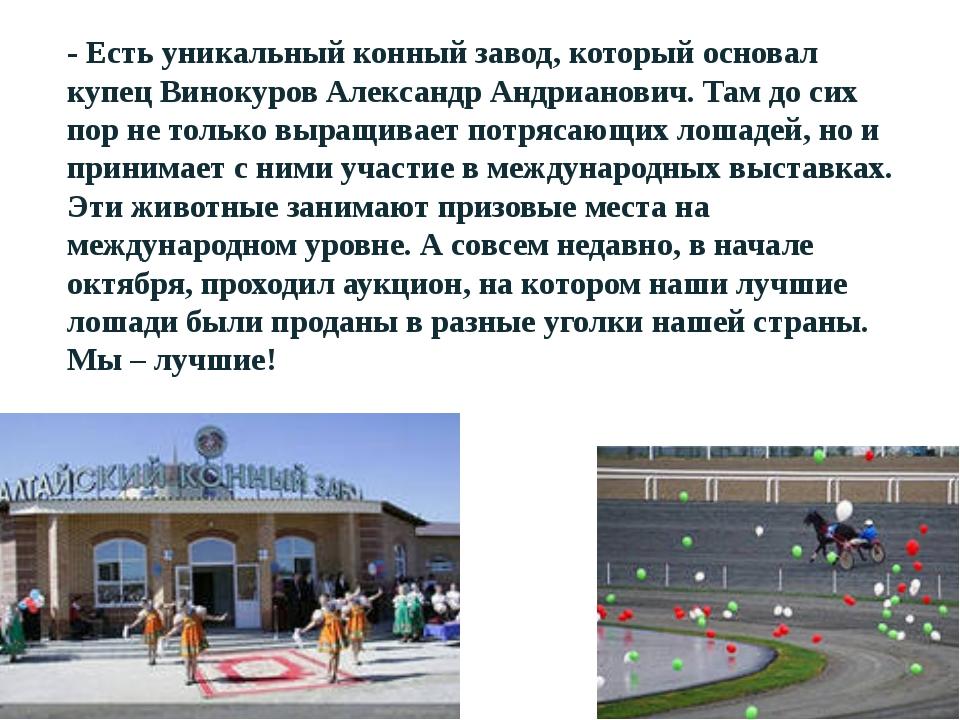 - Есть уникальный конный завод, который основал купец Винокуров Александр Анд...
