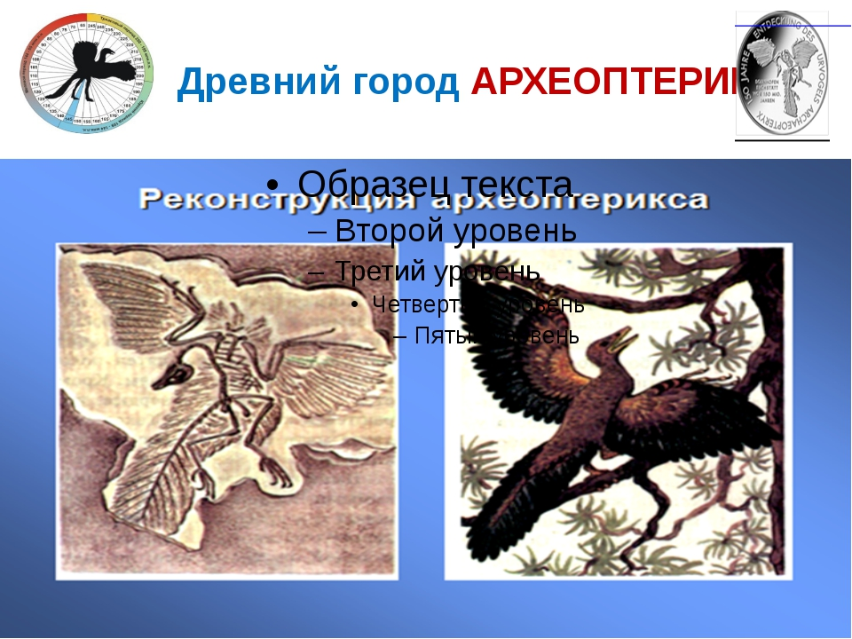 Древний город АРХЕОПТЕРИКС