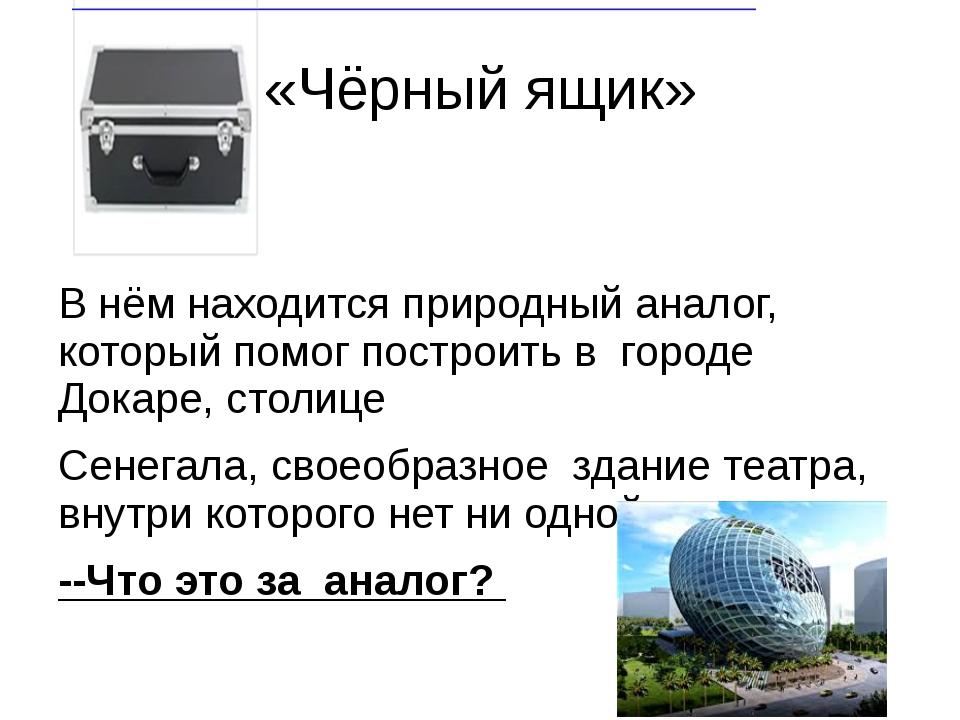 «Чёрный ящик» В нём находится природный аналог, который помог построить в гор...