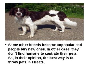 Some other breeds become unpopular and people buy new ones. In other case, t