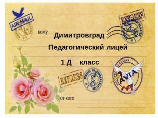 Димитровград Педагогический лицей 1 Д класс
