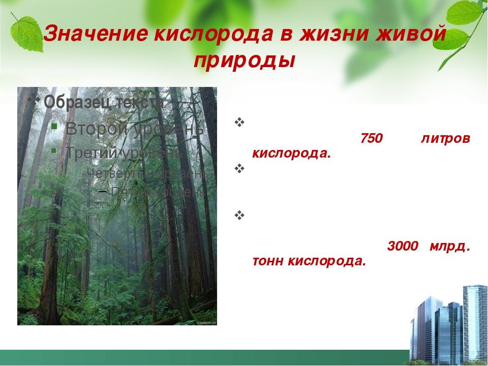 Значение кислорода в жизни живой природы Человек в сутки вдыхает примерно 750...