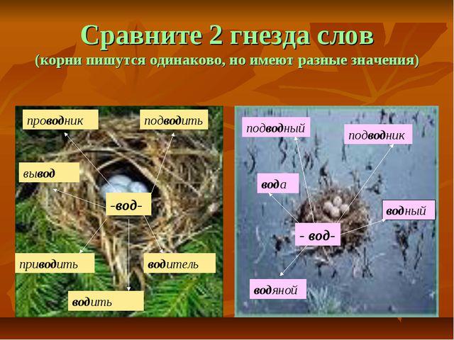 Сравните 2 гнезда слов (корни пишутся одинаково, но имеют разные значения) -в...