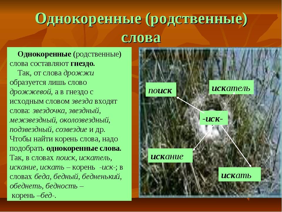Однокоренные (родственные) слова -иск- поиск искатель искание искать Однокоре...