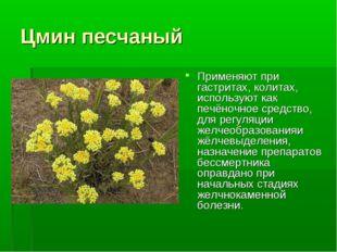 Цмин песчаный Применяют при гастритах, колитах, используют как печёночное сре