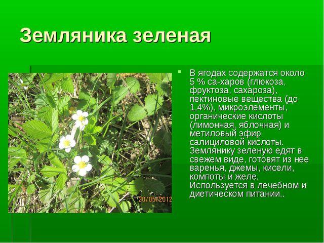 Земляника зеленая В ягодах содержатся около 5 % са-харов (глюкоза, фруктоза,...