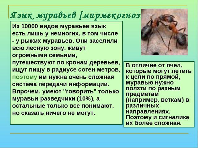 Язык муравьев [мирмекогнозия] Из 10000 видов муравьев язык есть лишь у немног...