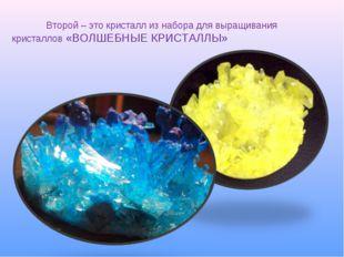 Второй – это кристалл из набора для выращивания кристаллов «ВОЛШЕБНЫЕ КРИС