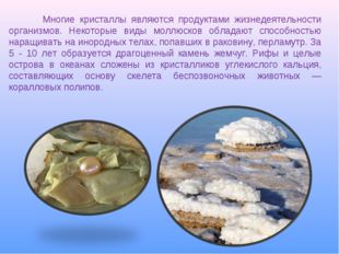 Многие кристаллы являются продуктами жизнедеятельности организмов. Некоторые