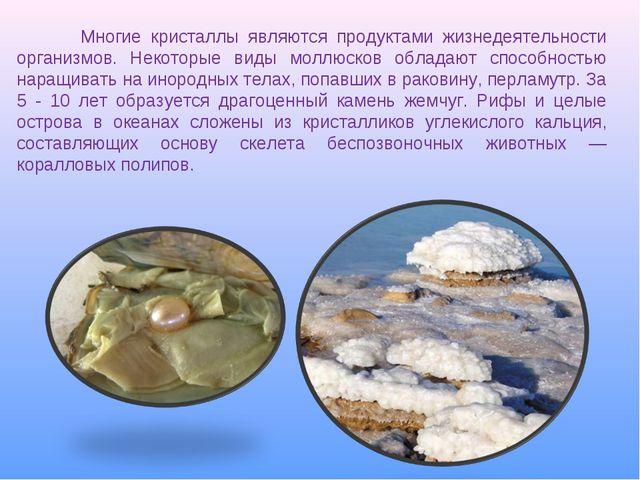Многие кристаллы являются продуктами жизнедеятельности организмов. Некоторые...