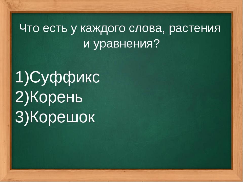 Что есть у каждого слова, растения и уравнения? Суффикс Корень Корешок