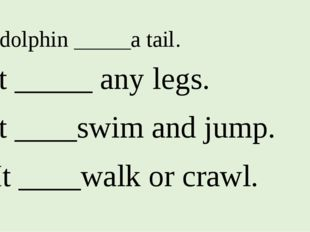 1. A dolphin _____a tail. 2. It _____ any legs. 3. It ____swim and jump. 4. I