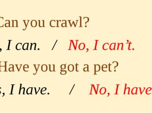 5. Can you crawl? Yes, I can. / No, I can't. 6. Have you got a pet? Yes, I h
