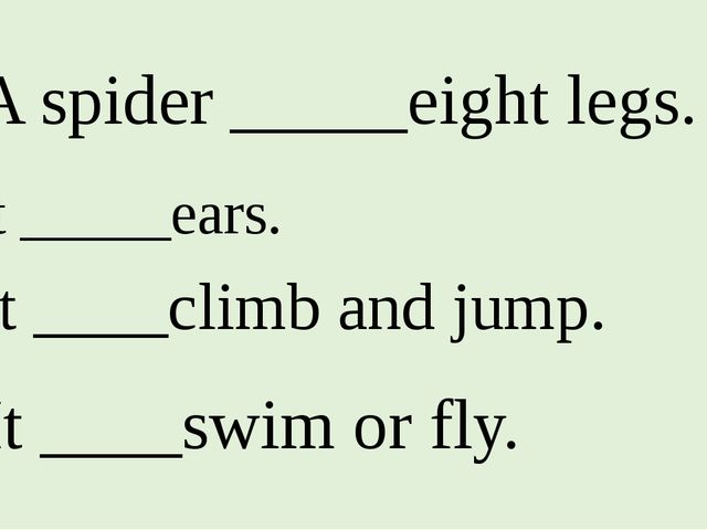 1. A spider _____eight legs. 2. It _____ears. 3. It ____climb and jump. 4. It...