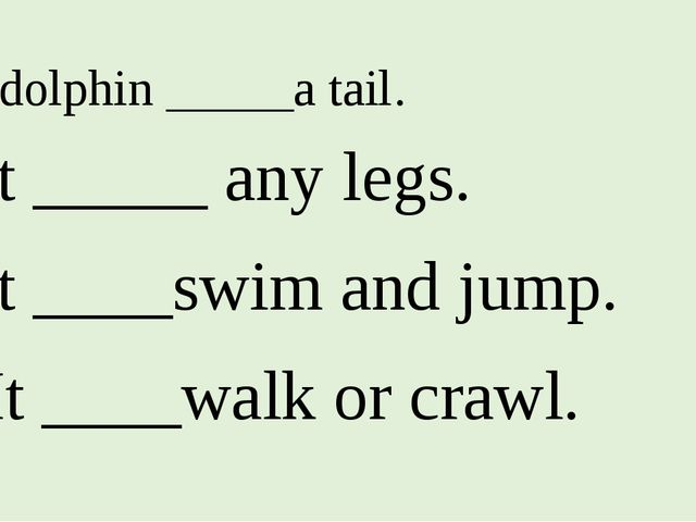 1. A dolphin _____a tail. 2. It _____ any legs. 3. It ____swim and jump. 4. I...