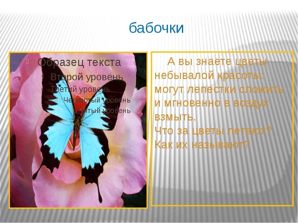 бабочки А вы знаете цветы небывалой красоты: могут лепестки сложить и мгновен...