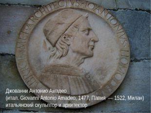 Джованни Антонио Амадео (итал. Giovanni Antonio Amadeo, 1477, Павия — 1522, М