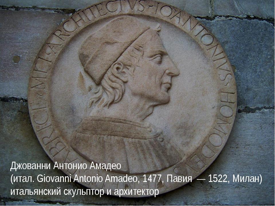 Джованни Антонио Амадео (итал. Giovanni Antonio Amadeo, 1477, Павия — 1522, М...