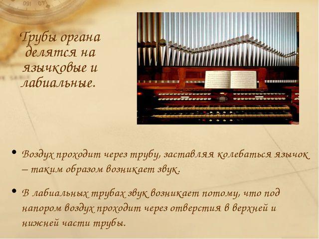 Трубы органа делятся на язычковые и лабиальные. Воздух проходит через трубу,...