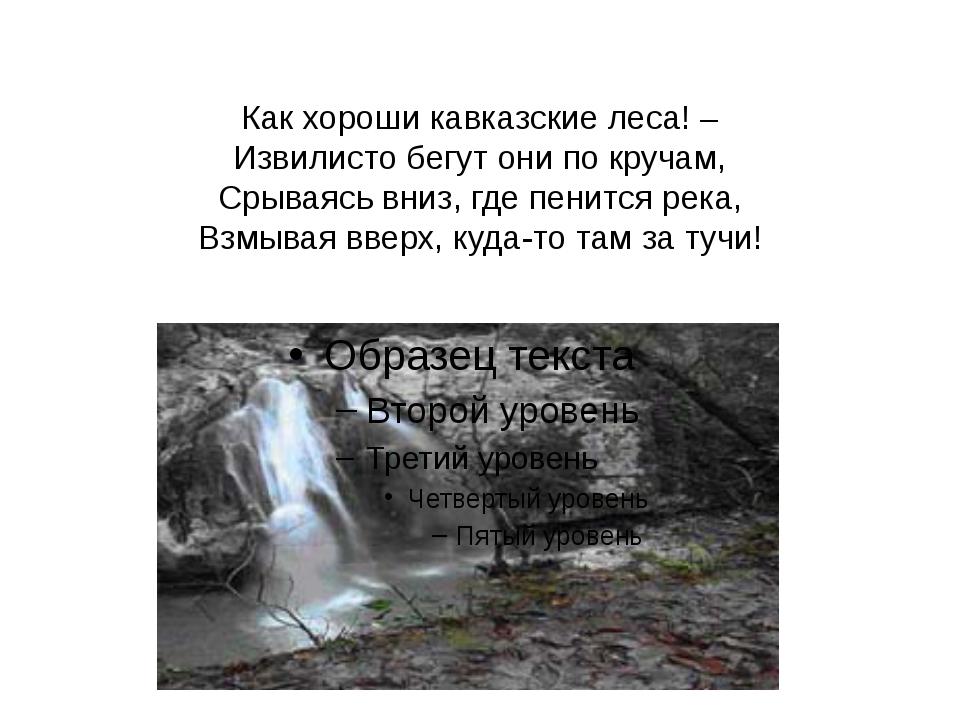 Как хороши кавказские леса! – Извилисто бегут они по кручам, Срываясь вниз, г...