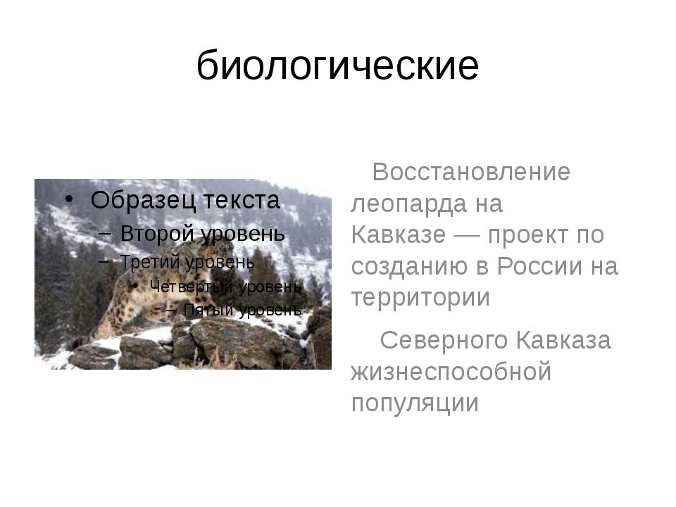 биологические Восстановление леопарда на Кавказе— проект по созданию в Росси...