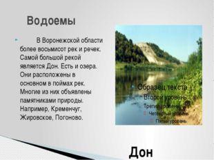 В Воронежской области более восьмисот рек и речек. Самой большой ре