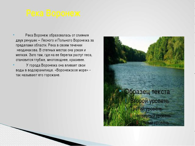 Река Воронеж образовалась от слияния двух речушек – Лесного и Польн...