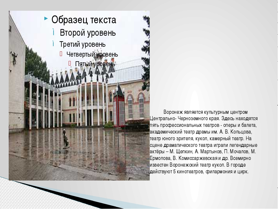Воронеж является культурным центром Центрально- Черноземного края....