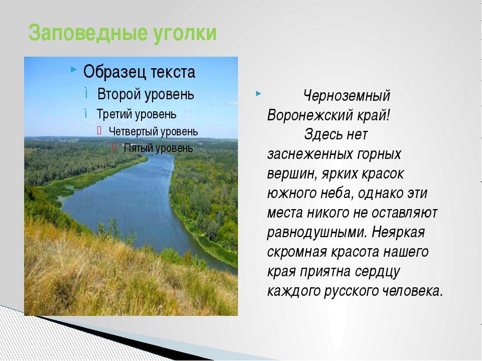 Черноземный Воронежский край!  Здесь нет заснеженных горны...