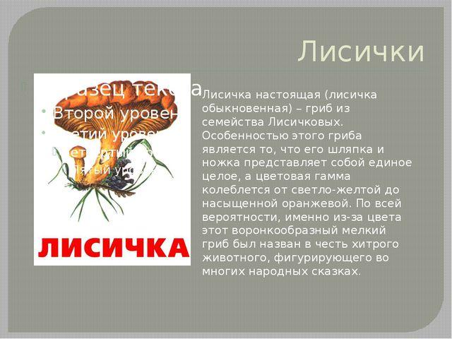 Лисички Лисичка настоящая (лисичка обыкновенная) – гриб из семейства Лисичков...
