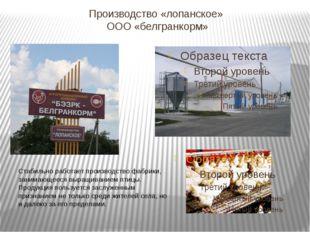 Производство «лопанское» ООО «белгранкорм» Стабильно работает производство фа