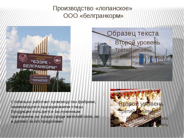 Производство «лопанское» ООО «белгранкорм» Стабильно работает производство фа...