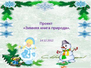 Проект «Зимняя книга природа». 14.12.2012