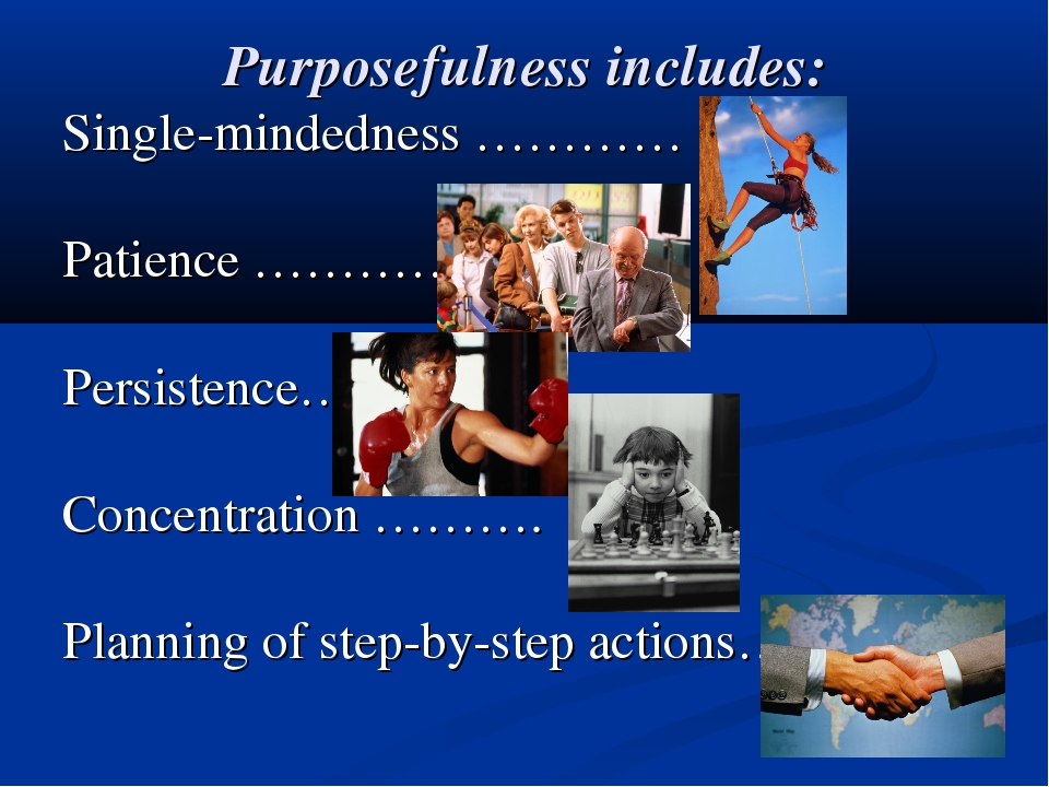 Purposefulness includes: Single-mindedness ………… Patience …………. Persistence… C...