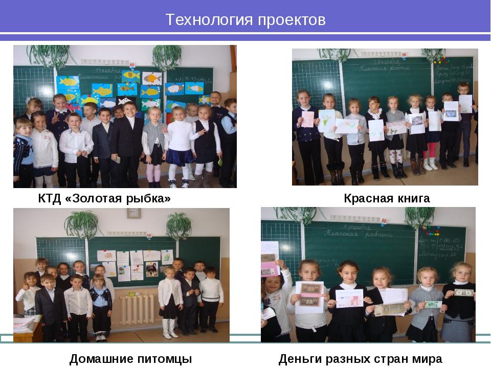 Технология проектов Деньги разных стран мира Домашние питомцы Красная книга К...