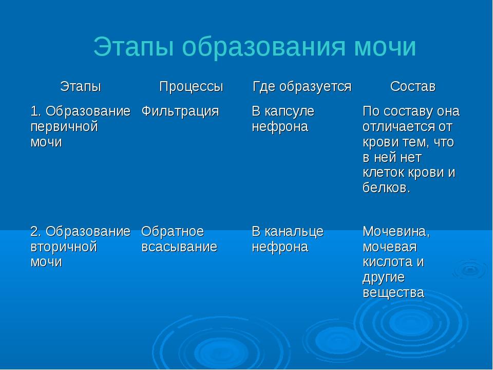 Этапы образования мочи ЭтапыПроцессыГде образуетсяСостав 1. Образование пе...
