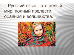 Русский язык – это целый мир, полный прелести, обаяния и волшебства.