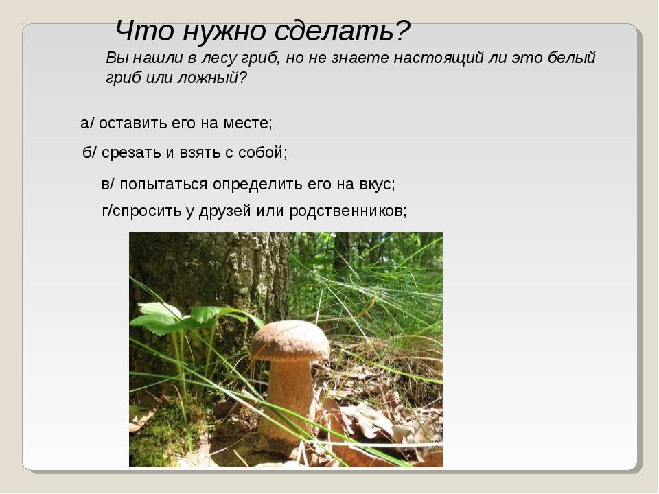 Что нужно сделать? Вы нашли в лесу гриб, но не знаете настоящий ли это белый...