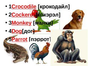 1Crocodile [крокодайл] 2Cockerel [кокэрэл] 3Monkey [манки] 4Dog[дог] 5Parrot